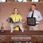 Cristyn Zloza and Quinn 3rd in Mixed Bred with Poodle in Bedlington Clip