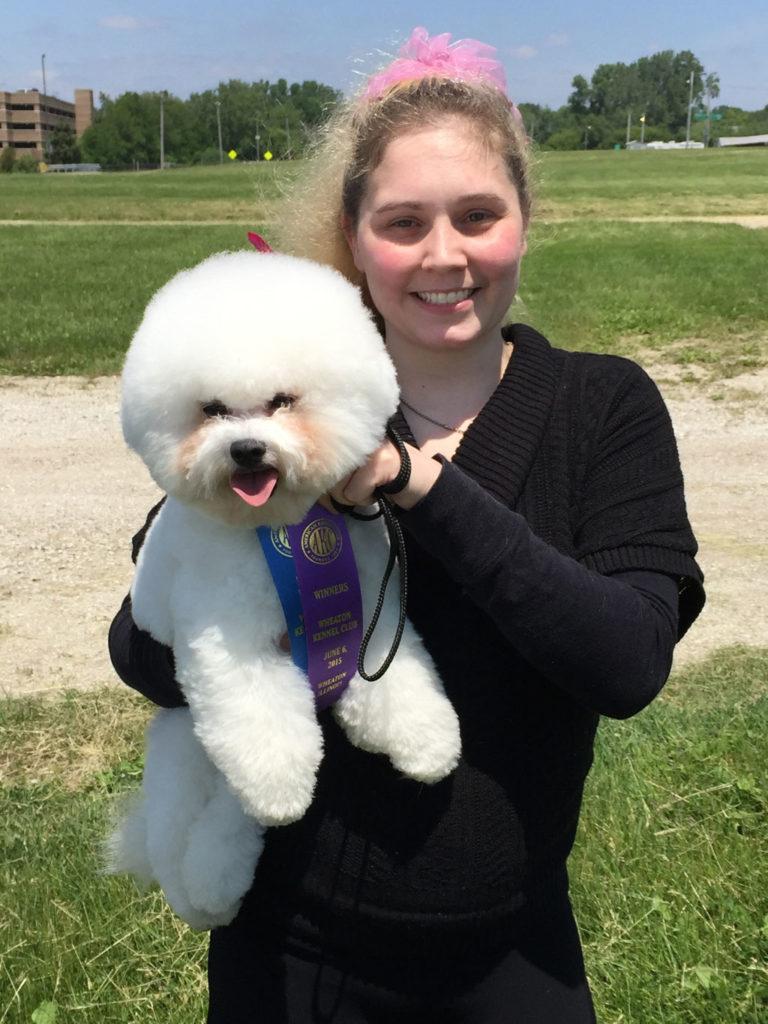 Bichon Frise Tikaas Legal Tender aka Cash AKC Winner Dog