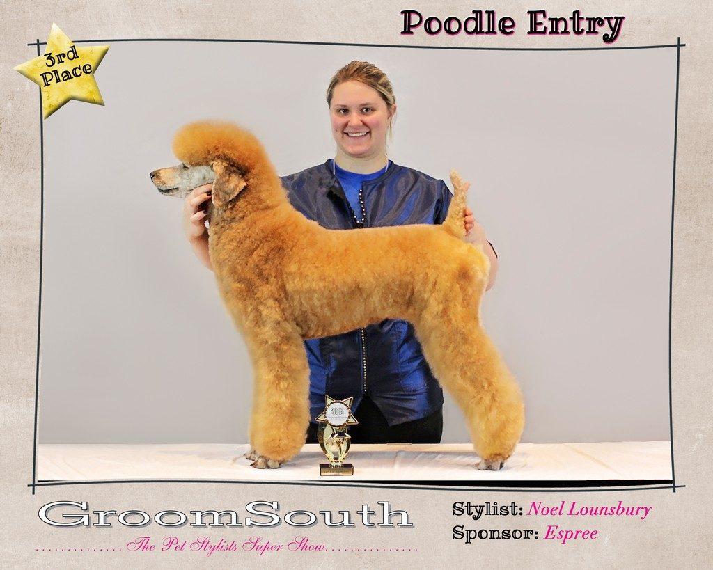 Groom South 2015 Noel-Poodles-3rd Place