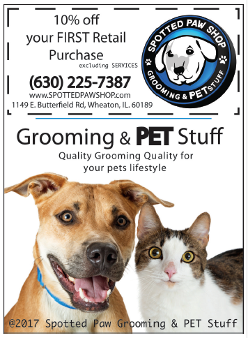 Grooming Shop Promotion